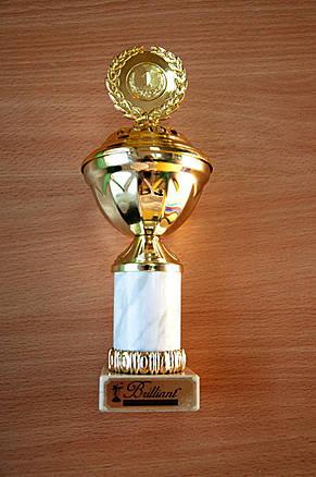"""II Всеукраїнський дитячий танцювально-вокальний фестиваль""""Brilliant"""", 1-е місце"""